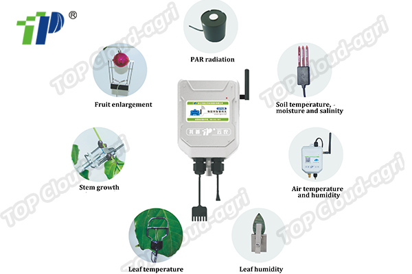 Plant Physiology and Ecology Monitoring System