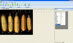 Crops Study Analysis System